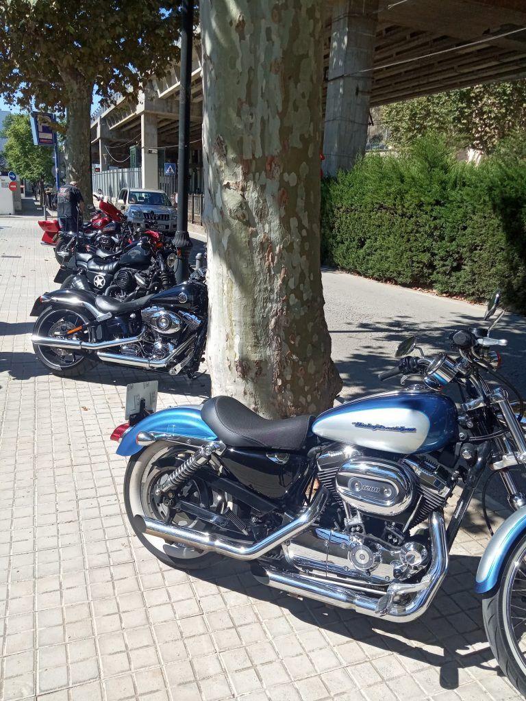 foto motos Harley puños